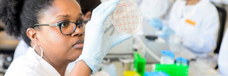 a woman looks a a Petri dish